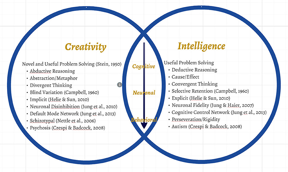 the cognitive processes of creativity by This article outlines a framework of creativity based on functional neuroanatomy recent advances in the field of cognitive neuroscience have identified distinct.