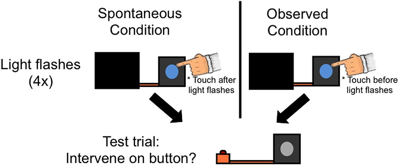 Test Condition Room Temperature