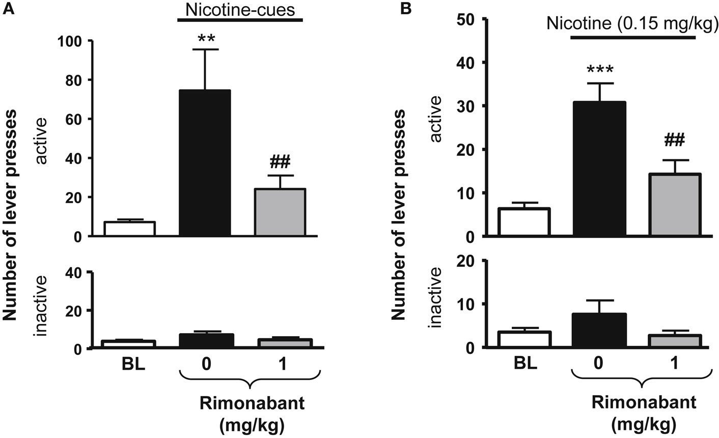 nootropic effects of nicotine I found that nicotine greatly aided my nicotine - nootropic i think the piracetam and nicotine work synergistically to produce nootropic-like effects click.