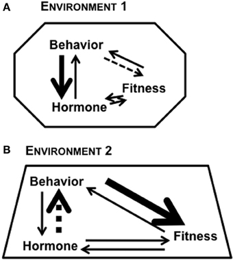Differential Fitness Natural Selection