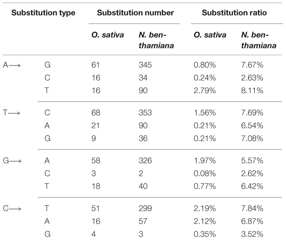 Diversity Analysis in Ocimum Sp. Through Rapd-Pcr.