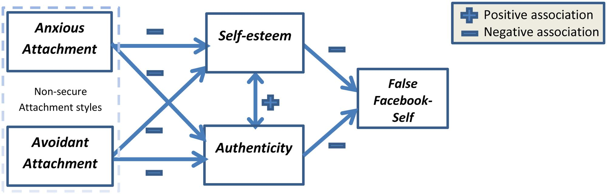 conceptual framework on self esteem This article looks to provide an insight into the plethora of research literature, measures and definitions available in the field of self-esteem its origins, from both a theoretical and contemporary perspective, are assessed before reviewing the three significant hypothesises battling for centre ground in the.