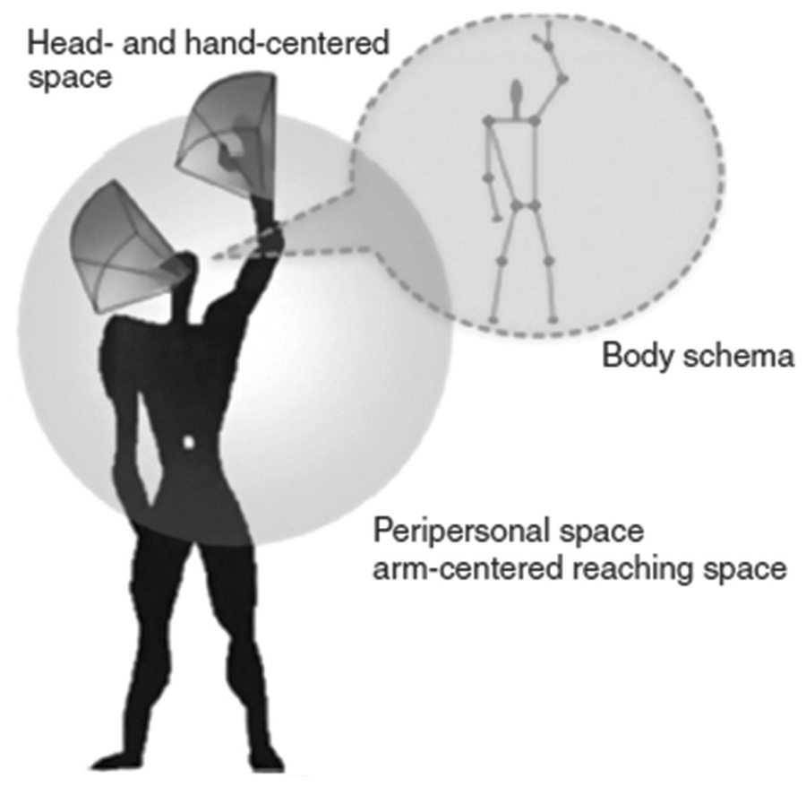 proxemics essay Contact/low contact nonverbal communication proxemics can be one criteria for the classification of nonverbal communication: we talk.
