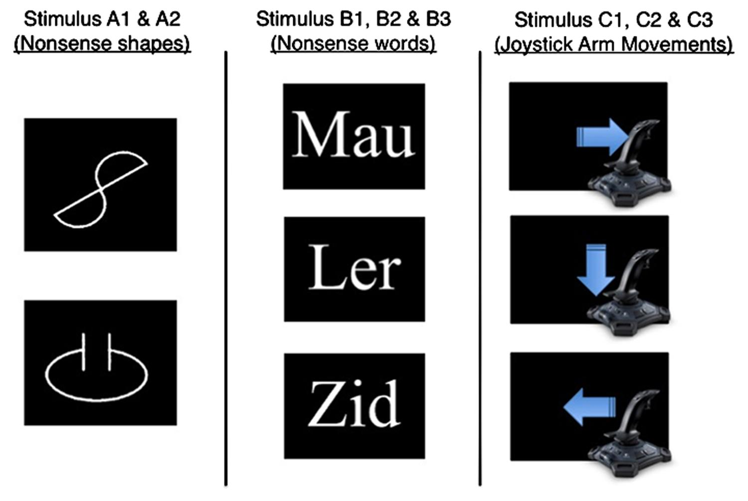 an overview of the two types of stimulus Signed randomly into groups consisting of 2 members both the  keywords:  reaction time, auditory stimuli, visual stimuli,  introduction.