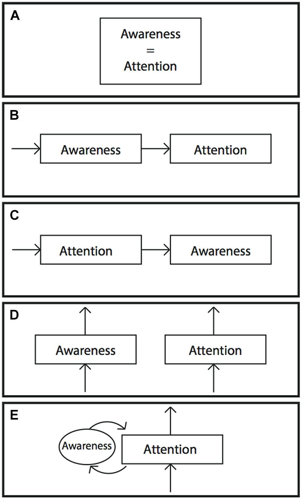 a literature review on the relationship between race and attention Vocabulary instruction, reading comprehension, and student  the following literature review is an analysis of the  this stated relationship between.