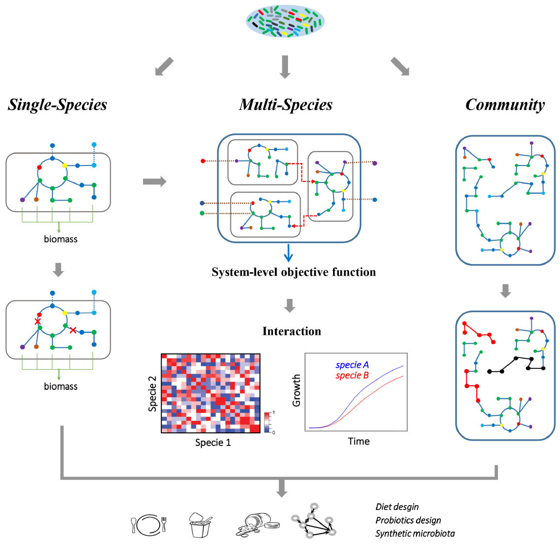 Human Gene Essentiality Nature Reviews Genetics