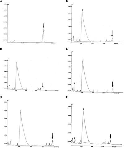 enzymes used to synthesise biopol 62журнал сибирского федерального университета сер биология №3 2012 код для.