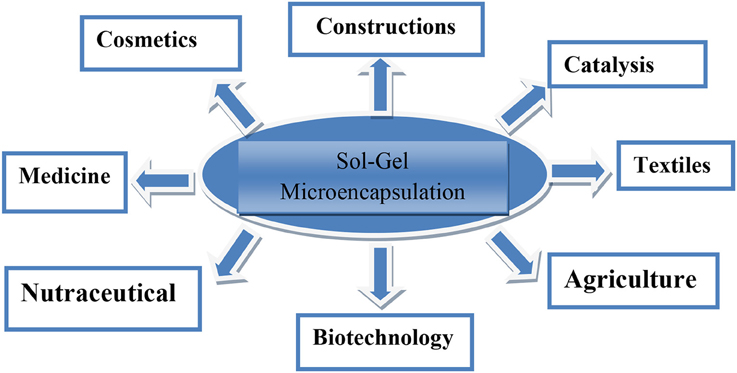 microencapsulation techniques and applications Microencapsulation microencapsulation: definition: it is the process by which individual particles or droplets of solid or liquid material (the core) are surrounded or coated with a.