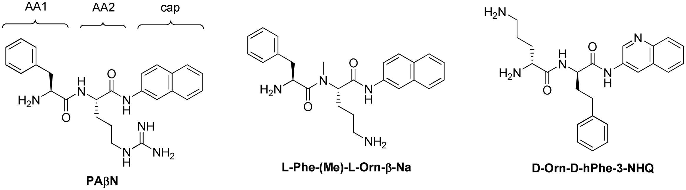 Efflux Pump Inhibitors Natural Products