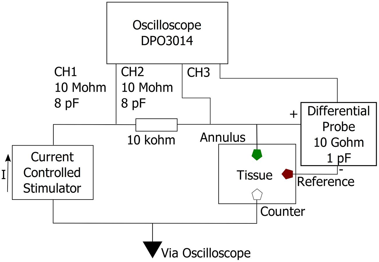 frontiers in vivo comparison of the charge densities required to frontiersin org