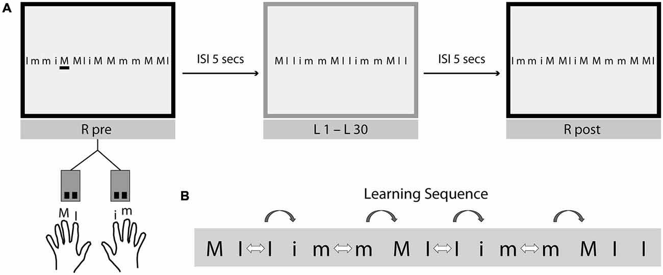 Serial reaction time task psychology test