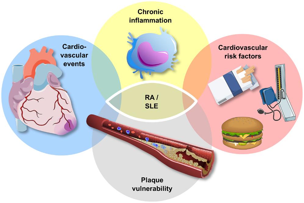 повышен холестерин в крови у женщин причины