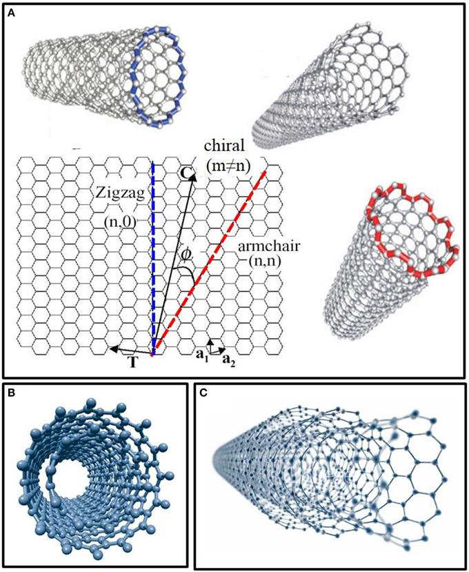 Frontiers Carbon Nanotube Biosensors Chemistry