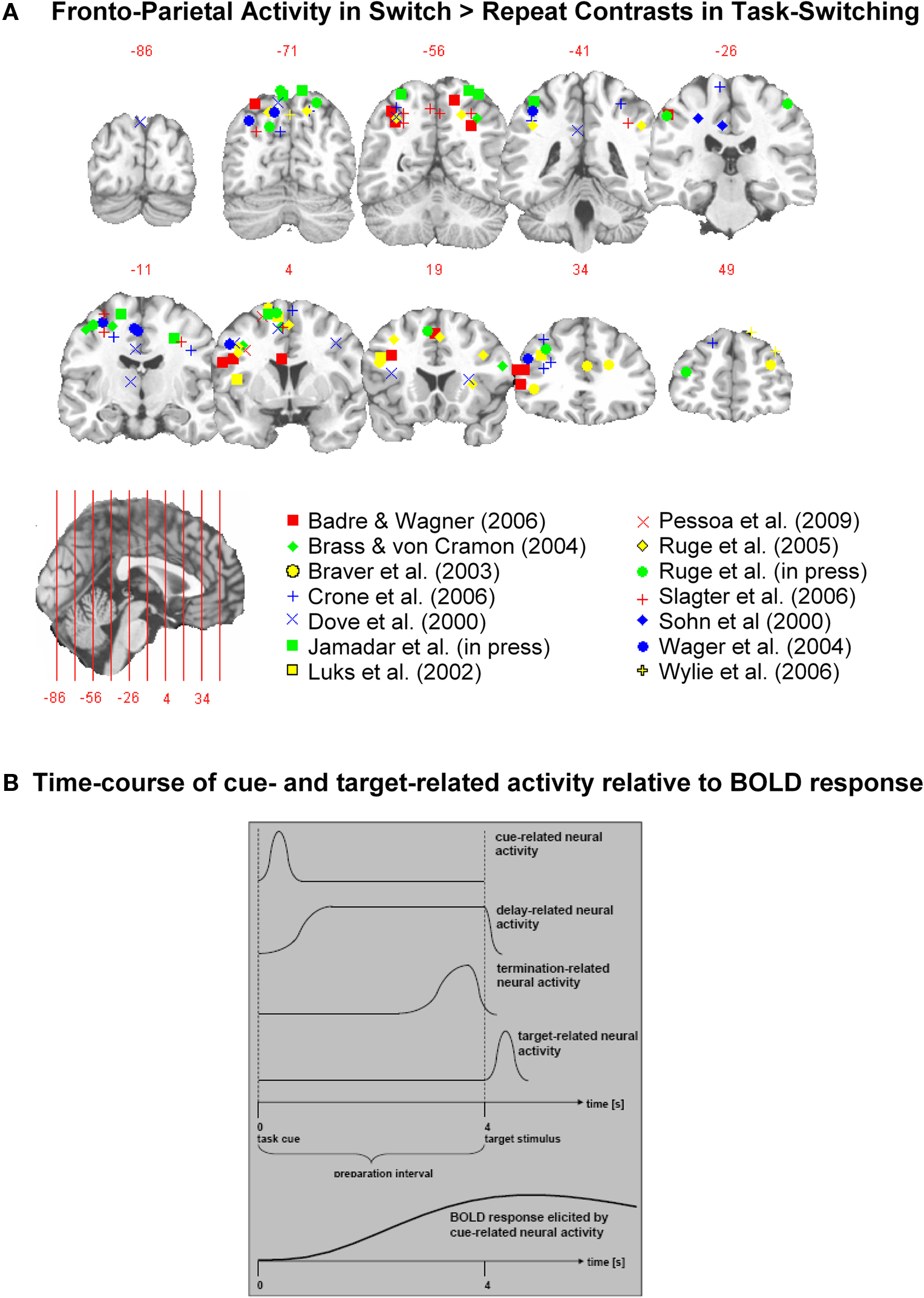 blood oxygenation level dependent fmri psychology essay We hypothesized that we could use the blood oxygen level–dependent american journal of neuroradiology by functional magnetic resonance imaging.