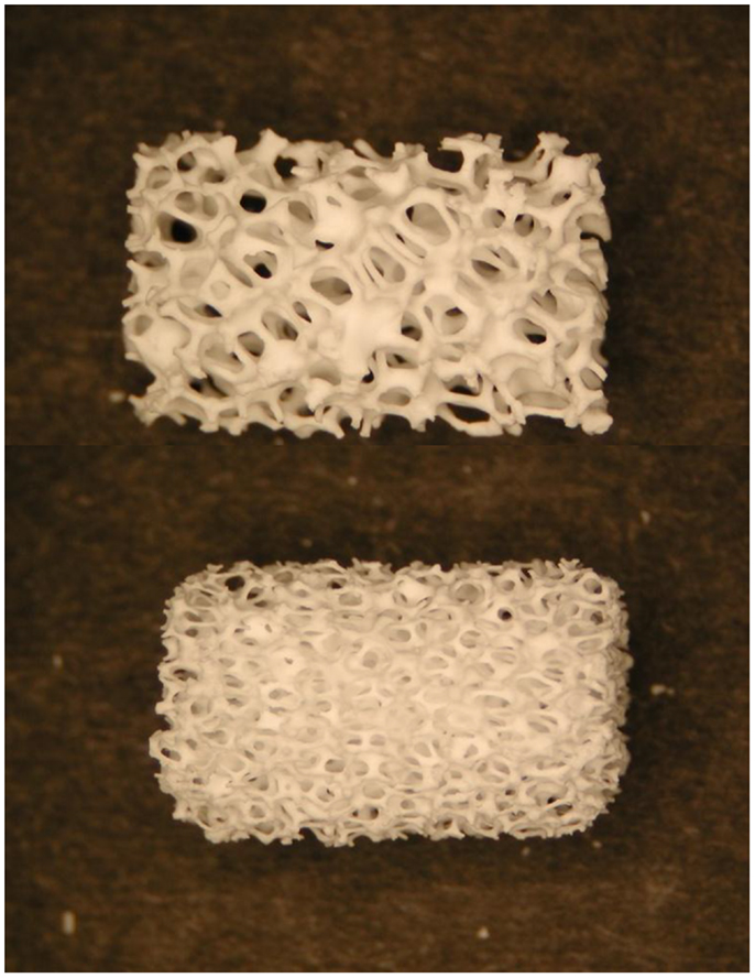 Frontiers Bioceramics And Scaffolds A Winning