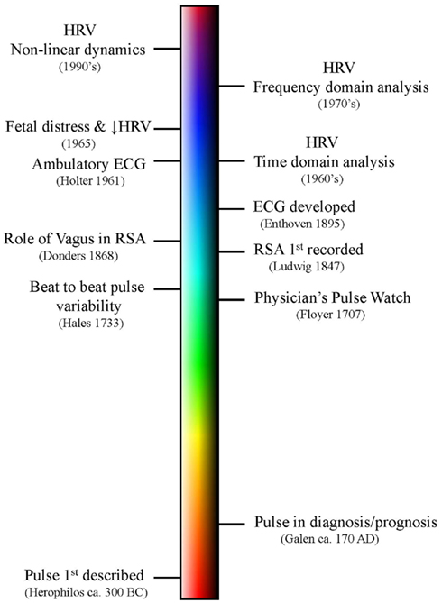 Timeline - Heart Rate Variability Measurement