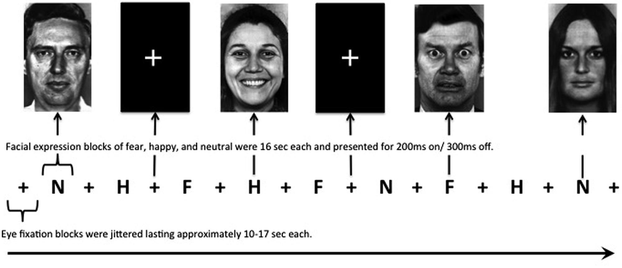 「amygdala sensor smile」の画像検索結果