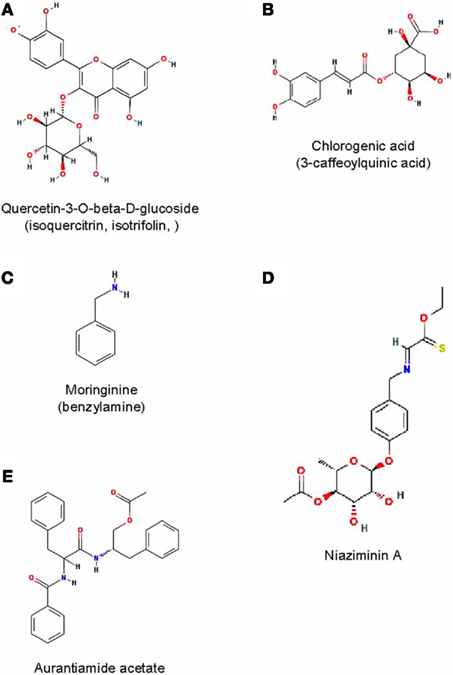 review article in journal of ethnopharmacology