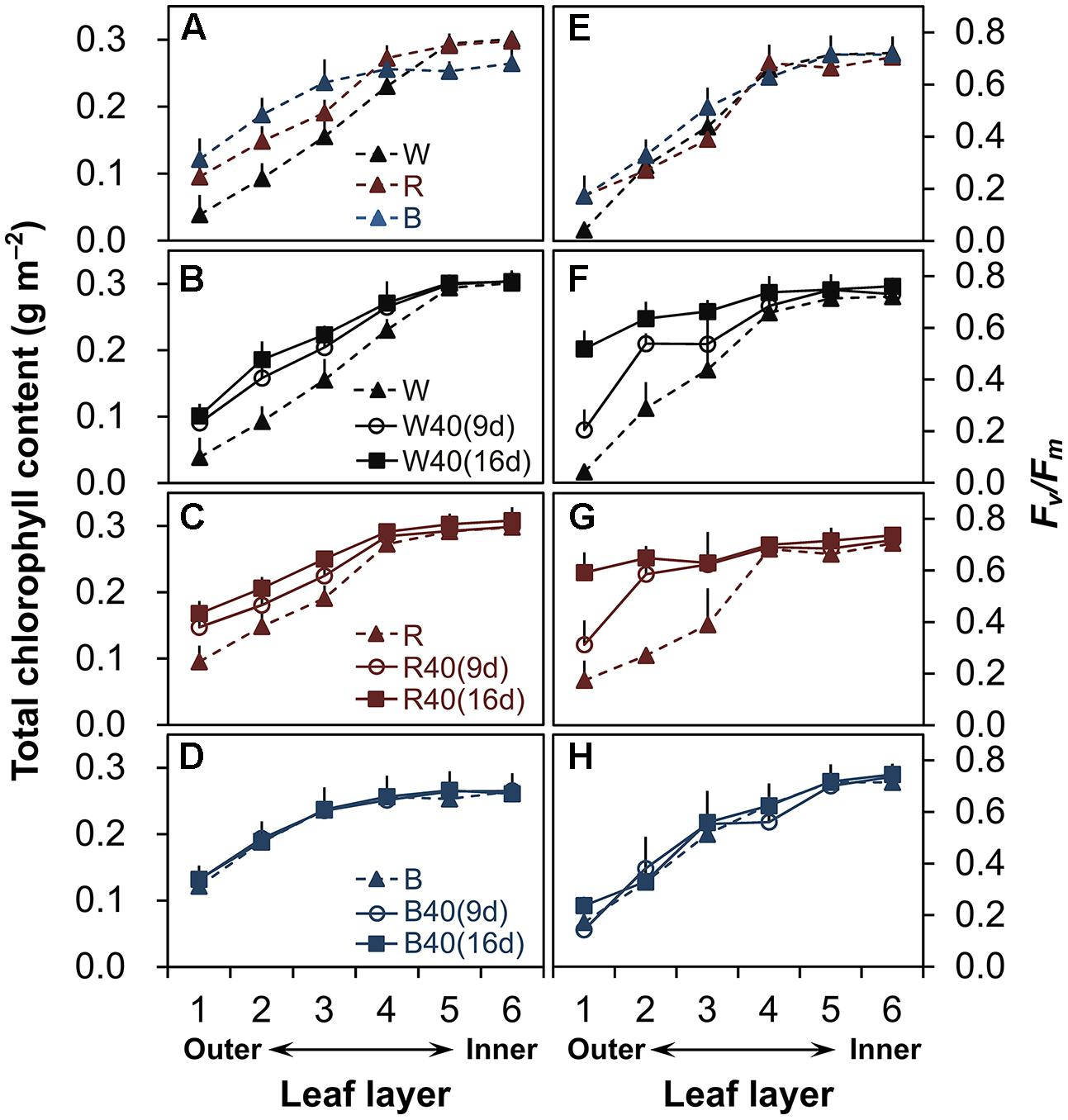 effect of different concentrations of carbon dioxide on the rate of photosynthesis in spinach leafs  Carbon dioxide in photosynthesis in higher concentrations, more carbon is incorporated into carbohydrate, therefore increasing the rate of photosynthesis in.