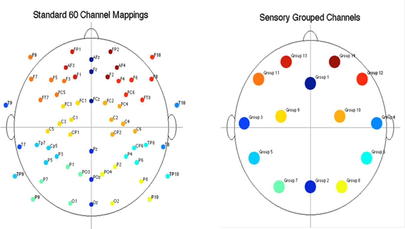 Frontiers | Visual, Auditory, and Cross Modal Sensory Processing ...