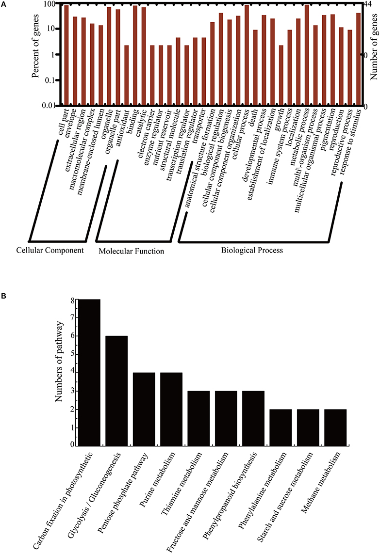 comparative proteomics Results highlight potential for mass spectrometry-based proteomics in  by ms- peptides and their biological features deduced from comparative genomics.
