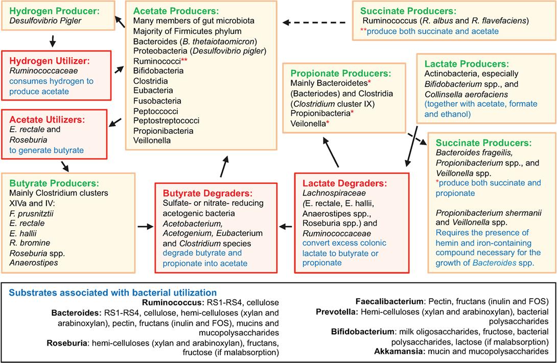 pdf анализ и оптимизация свч