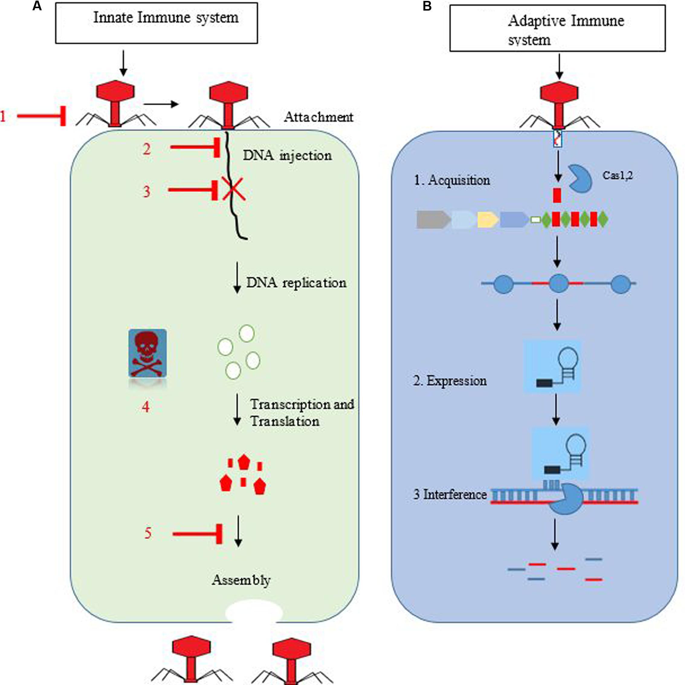 read Structure based Ligand Design (Methods and Principles in Medicinal