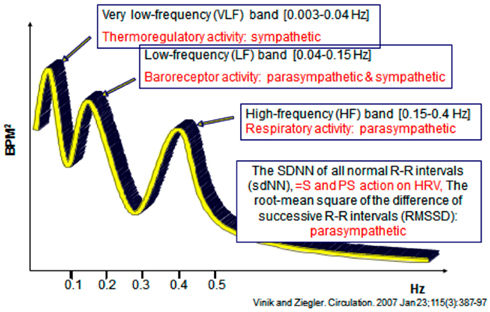 thesis related to heart rate variability Thesis for doctoral degree (phd) 2009 heart rate variability in patients with stable angina pectoris inge björkander thesis for doctoral degree (phd) 2009.