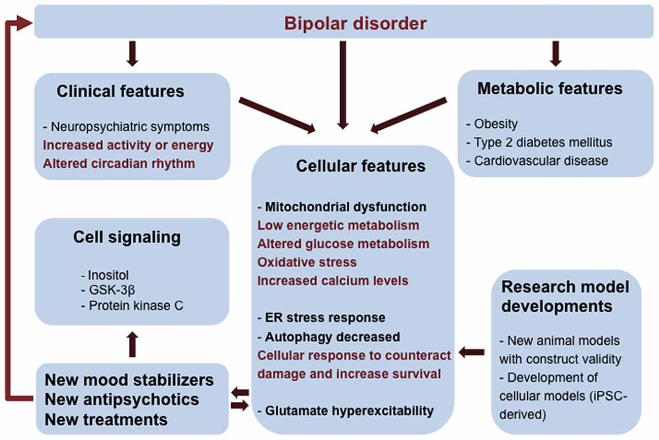 How to Sleep with Bipolar Disorder