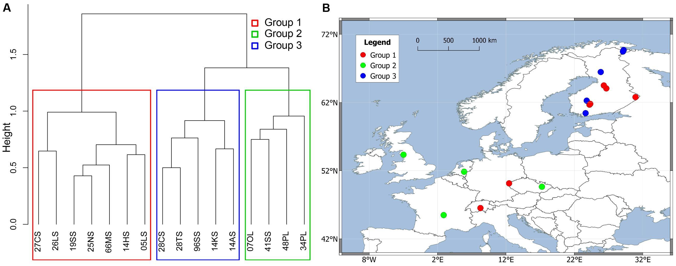 Identifying Natural Clusters Single Link Vs Complete Link