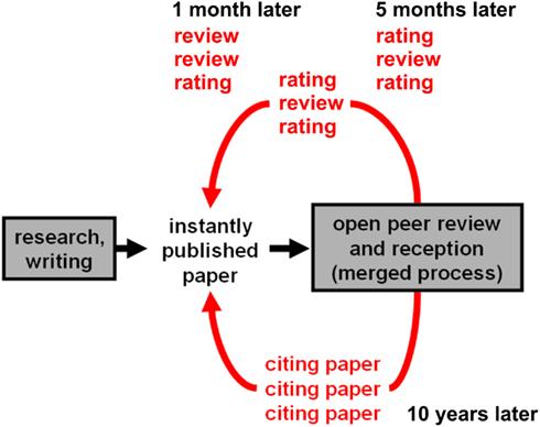 Neuroscience essay service reviews