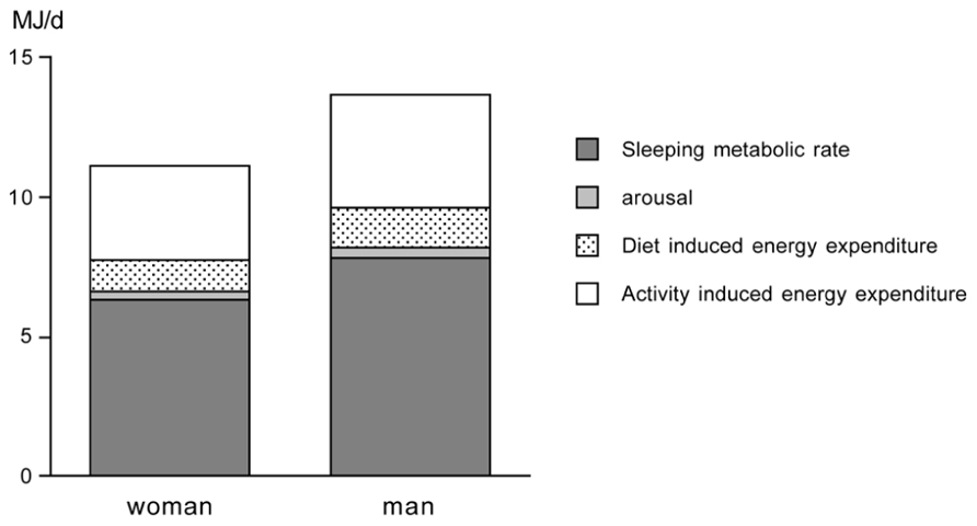 frontiers | physical activity and physical activity induced energy, Muscles