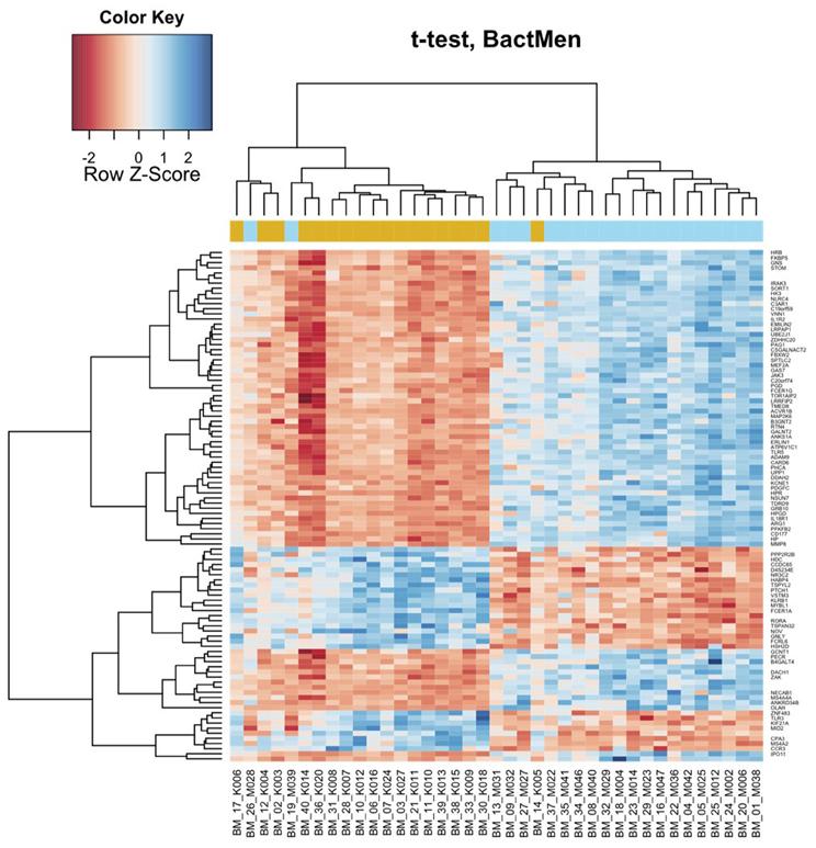 Levels of Gene Expression Gene Expression Levels