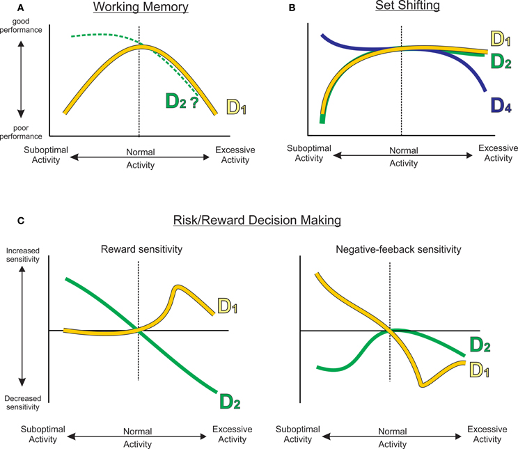 Frontiers | Prefrontal dopamine and behavioral flexibility ...