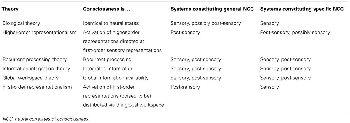Motor Theory Of Consciousness Make Everything You Motorized