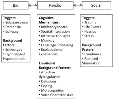 Biopsychosocial Assessment Samples