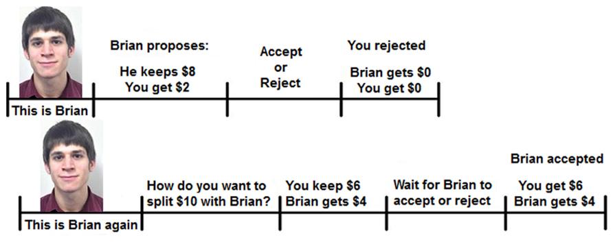 Option trading irs