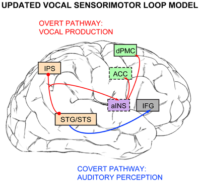 visual versus auditory memory Cognitive load theory also shows us that working memory can be extended in two ways first, the mind processes visual and auditory information separately.