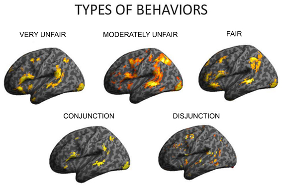 an analysis of the diverse types of behavior by humans Multiple risk behavior and injuryan international analysis of young people   these increases, together with the association between different types of risk.