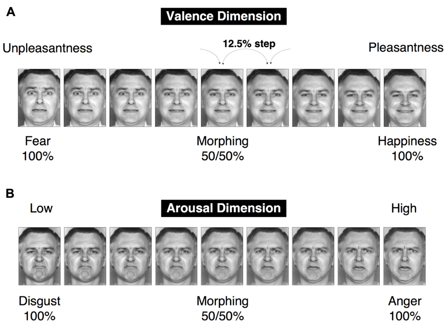 Ekman and friesen 1976 pictures of facial affect Affective neuroscience - Wikipedia