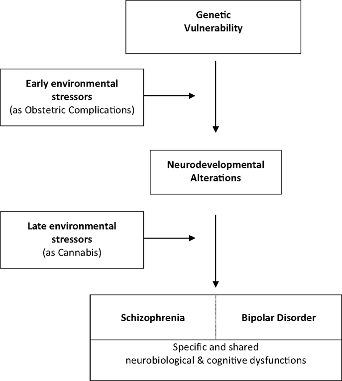 outline of bipolar disorder research paper Essay anxiety disorders anxiety is a feeling of tension associated with a sense of threat of danger when the source of the danger is not known in comparison.