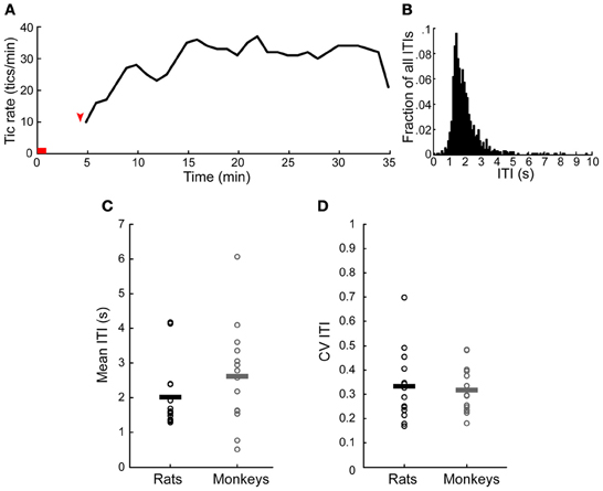 Frontiers Motor Tics Evoked By Striatal Disinhibition In