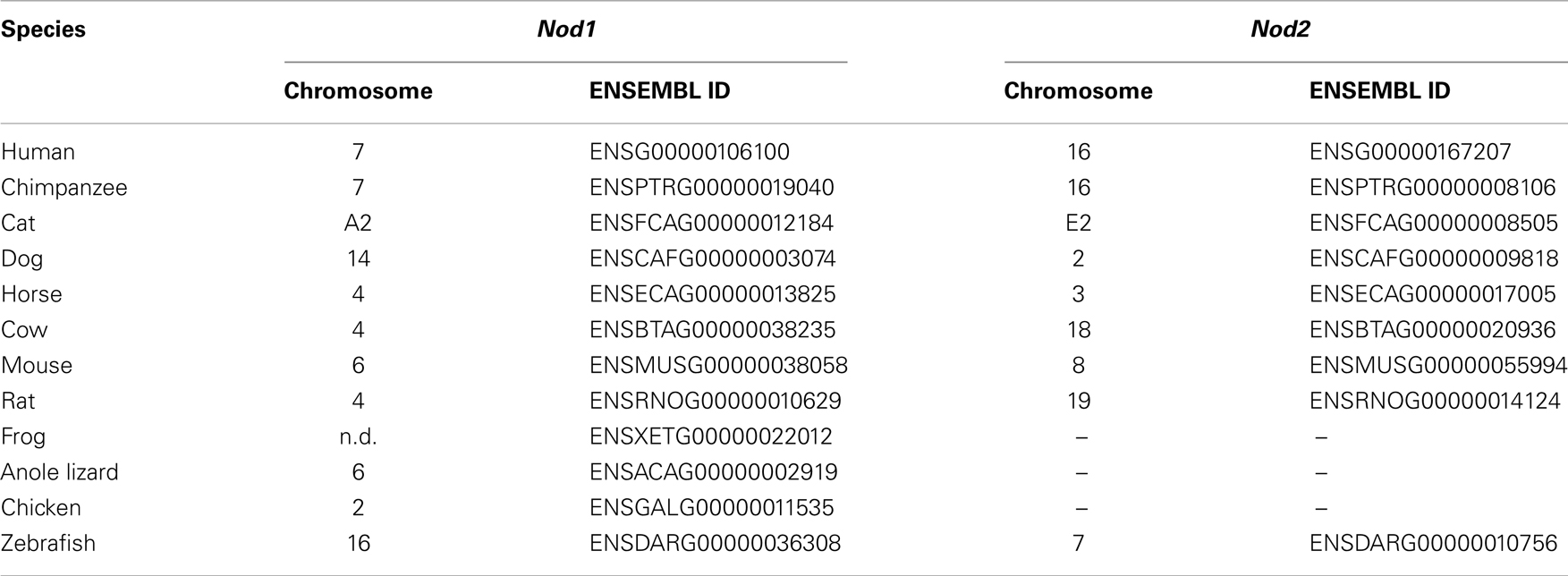 R07E51 - G patch domain-containing protein 1 homolog