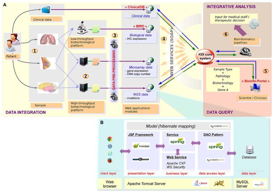Frontiers Bioinformatics For Precision Medicine In