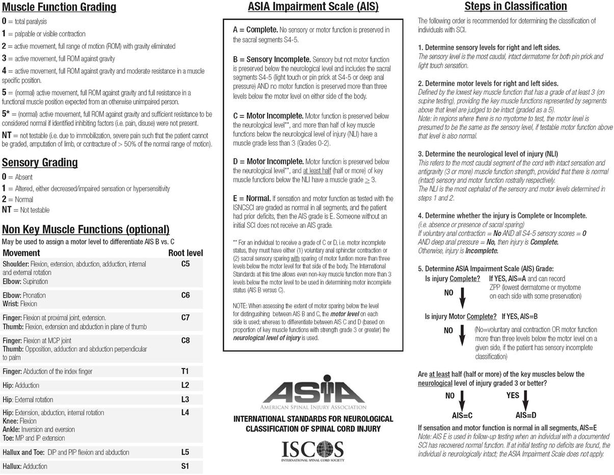 Index Scoring Sheet Scoring Sheet For The