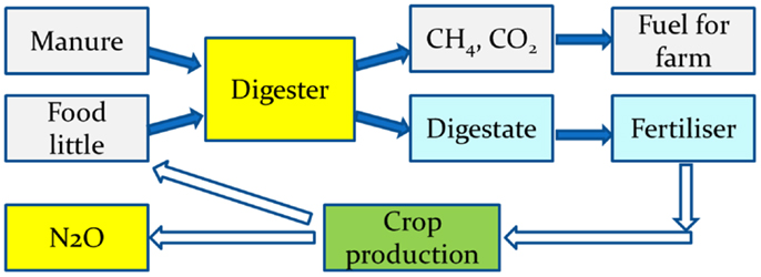 Decentralized biogas technology of anaerobic digestion and farm ...