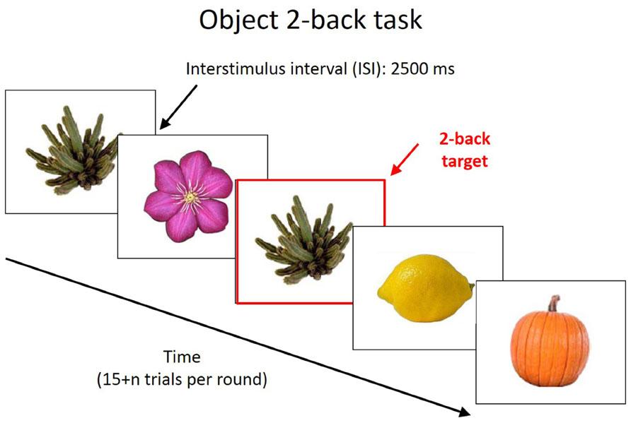 2-back task