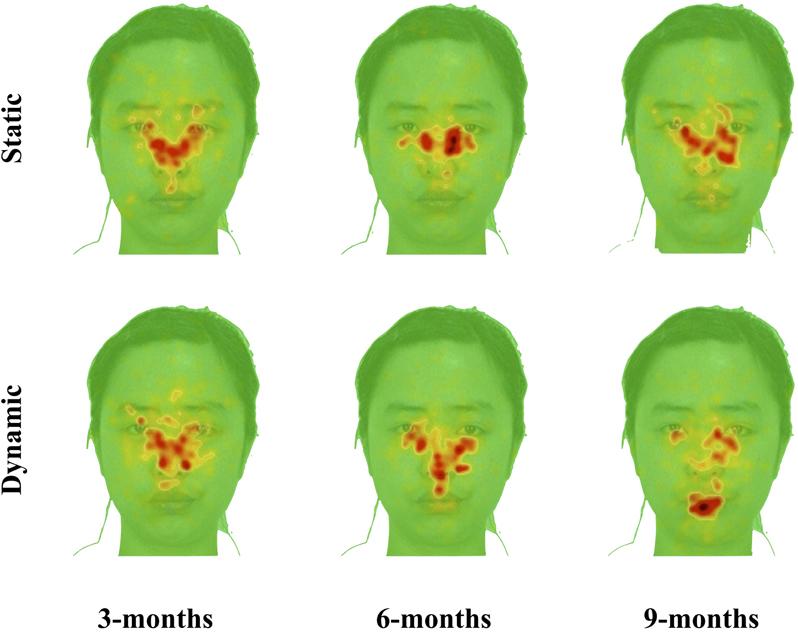 Facial recognition infant