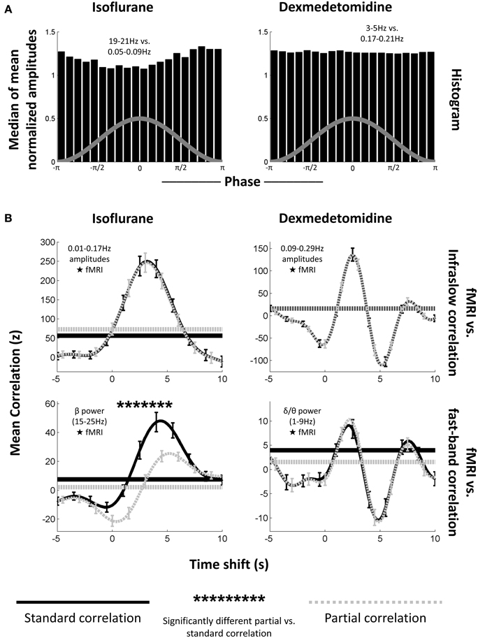 brain wave frequency and amplitude relationship