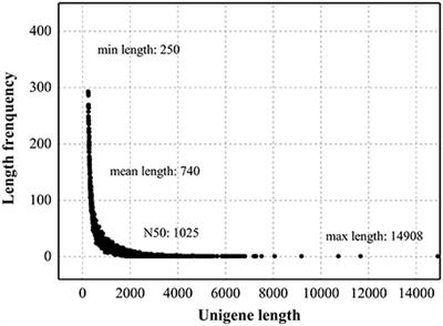 phd dissertation length psychology What is a dissertation asb th ringen dissertation length psychology  the length of a completed phd dissertation  phd dissertation length psychology.